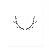 Painted Black Antlers