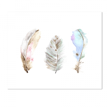 Whimsical Feather Trio